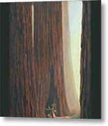 Sequoia Blacktail Deer Phone Case Metal Print by Crista Forest