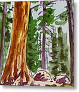 Sequoia Park - California Sketchbook Project  Metal Print