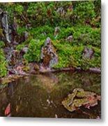 Serene Garden Pond Metal Print