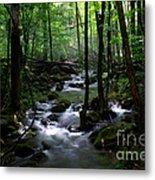 Serene Greenbrier Area Stream  Metal Print