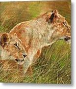 Serengeti Sisters Metal Print