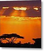 Serengeti Sunset Metal Print