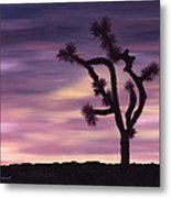 Serenity And Strength Metal Print