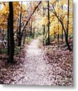 Serenity Walk In The Woods Metal Print