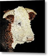 Sergeant Major A Hereford Bull Metal Print
