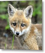 Seriously Metal Print by RJ Martens