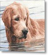 Setter Dog In Water Watercolor Portrait Metal Print