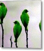 Seven Birds Of Green Metal Print