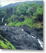Seven Sacred Pools Haleakala National Park Maui Hawaii Metal Print