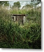 Shack In The Park Metal Print