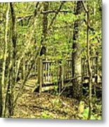 Shades Mountain Bridge In The Forest Metal Print