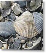 Shades Of Blue Shells Metal Print