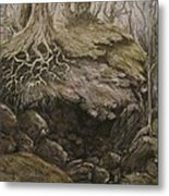 Shades Of Froud Metal Print