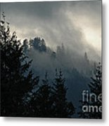 Shades Of The Pacific Northwest Metal Print