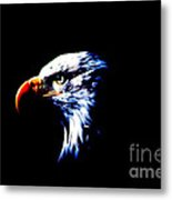 Shadow Eagle Metal Print