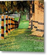 Shadow Fencing Metal Print