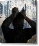 Shadow Of A Man Metal Print
