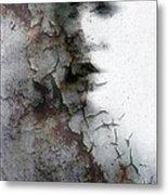 Shadow On A Wall Metal Print