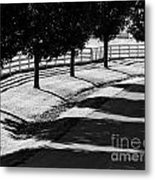 Shadow Patterns Metal Print