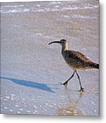 Shadow Walker Metal Print
