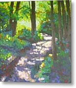 Shadowed Path Metal Print
