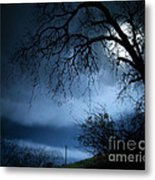 Shadowlands 3 Metal Print