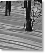 Shadows In Boyertown Park Metal Print