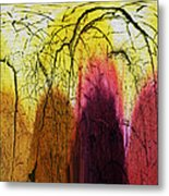 Shadows In The Grove Metal Print