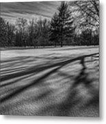 Shadows In The Park Metal Print