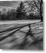 Shadows In The Park Square Metal Print