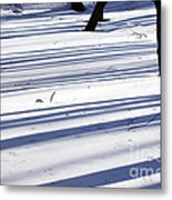 Shadows Lines On Snow In Park Metal Print