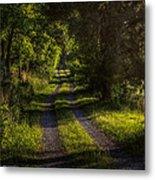 Shady Country Lane Metal Print by Paul Herrmann