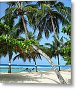 Shady Palms Metal Print