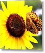 Sharing The Sunflower Metal Print