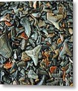 Sharks Teeth 2 Metal Print