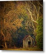 Shed And Trees Metal Print by Joyce Kimble Smith