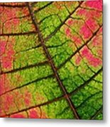 Shed Foliage Metal Print