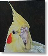 Sheeka The Cockatiel Metal Print
