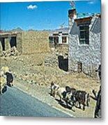 Sheep And Shepherd Along The Road To Shigatse-tibet Metal Print
