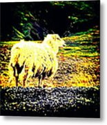 Don't You Look At Me With That Sheep Attitude  Metal Print