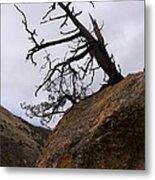 Sheep Creek Canyon Wyoming 10 Metal Print
