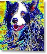 Sheep Dog 20130125v1 Metal Print