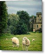 Sheep Grazing By Castle Metal Print