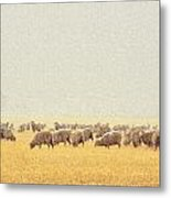 Sheep In Snow Metal Print by Kae Cheatham