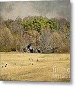 Sheep In The South Metal Print by Jai Johnson