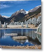 Sheep Lakes In Late October Metal Print