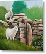 Sheep On A Rock Wall Metal Print