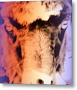 The Sheep Feel The Shame But It Isn't Her Fault  Metal Print