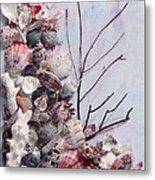 Shell Bouquet  No 6 Metal Print