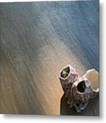 Shell House Metal Print by Paulette Maffucci